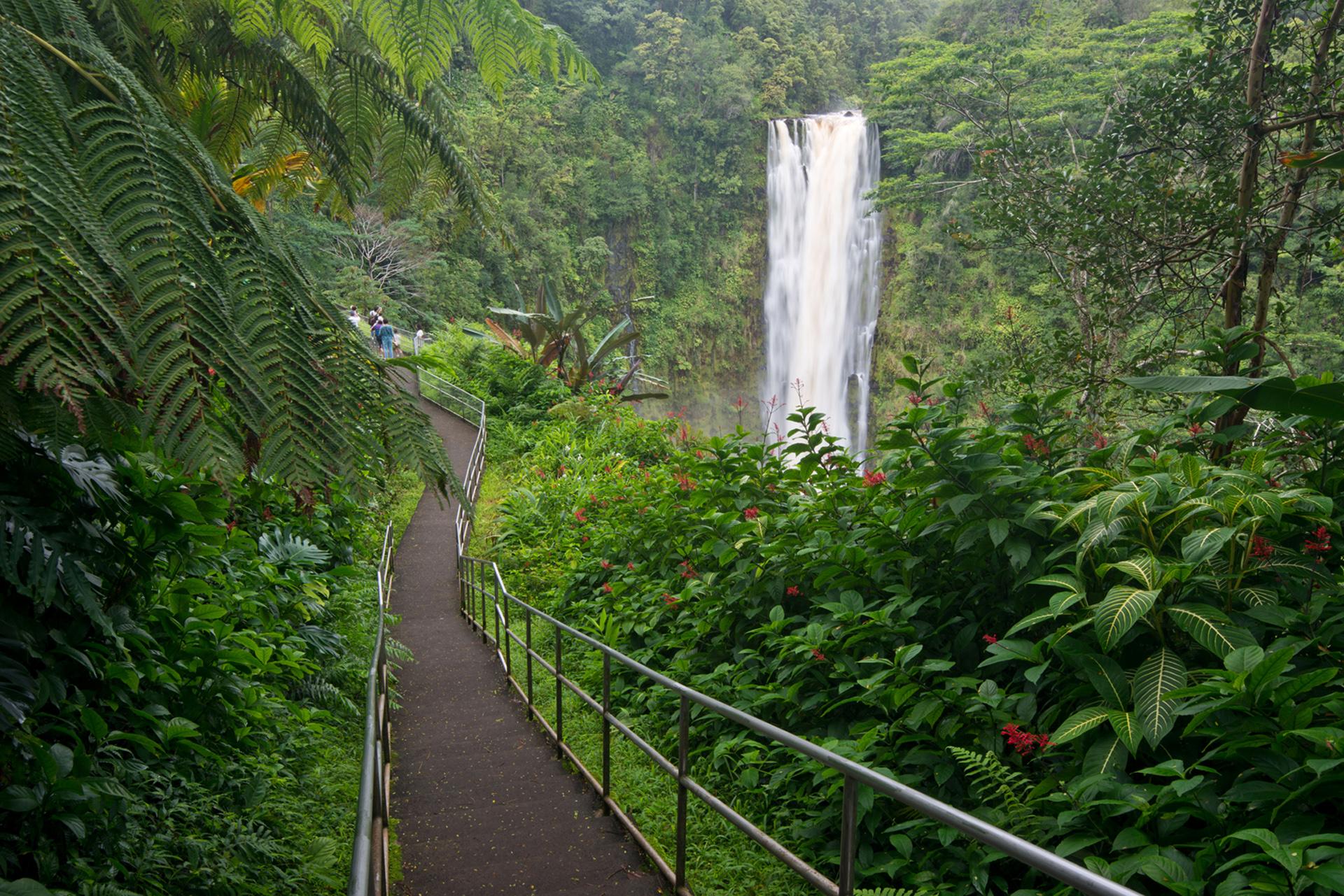 Hawaii Impfungen: Wie sollte man sich auf die Reise vorbereiten?